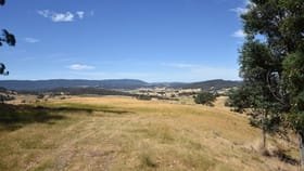 Rural / Farming commercial property for sale at Lot 1 Blairs Rd Mole Creek TAS 7304