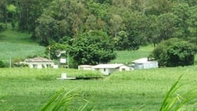 Rural / Farming commercial property for sale at 100 Whitakers Road Sarina QLD 4737