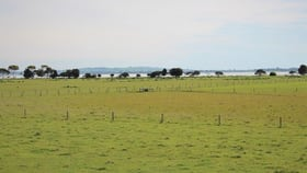 Rural / Farming commercial property for sale at 35 Meredith Park Road Irrewarra VIC 3249