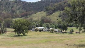 Rural / Farming commercial property for sale at 709 Whitlow Road Bingara NSW 2404