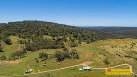 Rural / Farming commercial property for sale at 756 Upper Botobolar Road Mudgee NSW 2850