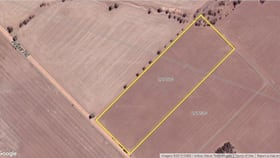 Rural / Farming commercial property for sale at Georgina WA 6532
