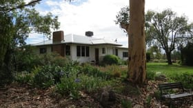 Rural / Farming commercial property for sale at 2400 Oregon Road Warialda NSW 2402