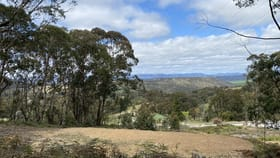 Rural / Farming commercial property for sale at 3372 Great Western Highway South Bowenfels NSW 2790