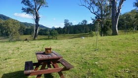 Rural / Farming commercial property for sale at Kyogle NSW 2474