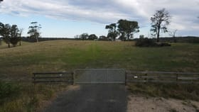 Rural / Farming commercial property for sale at 565 Waddells Rd Sarsfield VIC 3875