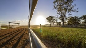 Rural / Farming commercial property for sale at 1101 Willowvale Road Massie QLD 4370