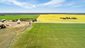 Rural / Farming commercial property for sale at 1099 Zerk Road Lock SA 5633