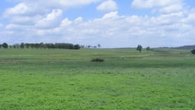Rural / Farming commercial property for sale at 541 New England Highway Glen Innes NSW 2370