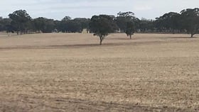 Rural / Farming commercial property for sale at Cnr Speers & Ryan Rd Corop VIC 3559