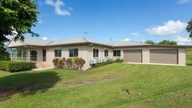 Rural / Farming commercial property for sale at 125 Utchee Creek Road Mena Creek QLD 4871