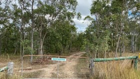 Rural / Farming commercial property for sale at 489 Riley Road Koumala QLD 4738