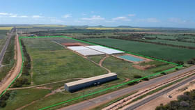 Rural / Farming commercial property for sale at Lot 2 Edward Road Narngulu WA 6532