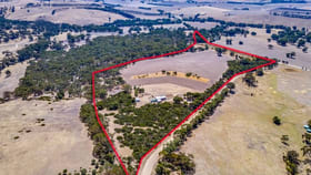 Rural / Farming commercial property for sale at 40 MAPLE LANE Hay Flat SA 5204