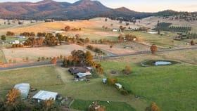 Rural / Farming commercial property for sale at 581 Glendonbrook Road Glendon Brook NSW 2330