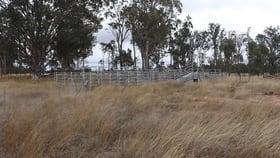 Rural / Farming commercial property for sale at Lot 52 Chinchilla Wondai Road Jandowae QLD 4410