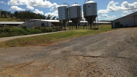 Rural / Farming commercial property for sale at KERRIBREE Manilla Road Attunga NSW 2345