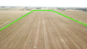 Rural / Farming commercial property for sale at Lot 1 O'Sullivans Road Purnim VIC 3278