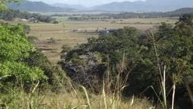 Rural / Farming commercial property for sale at Lot 33 Camelzulis Road Balnagowan QLD 4740