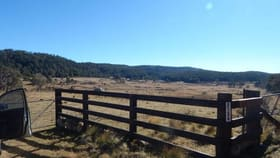 Rural / Farming commercial property for sale at Lot 5 Tuross Road Kybeyan NSW 2631
