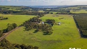 Rural / Farming commercial property for sale at 1244 Dempster Road Kalgan WA 6330