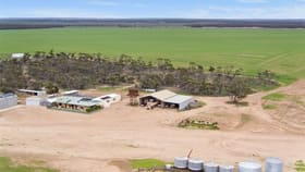 Rural / Farming commercial property for sale at Ceduna SA 5690