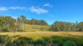 Rural / Farming commercial property for sale at 1 Waverley Road Hillville NSW 2430