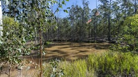 Rural / Farming commercial property for sale at Lot 9 Old Six Mile Lane Glenugie NSW 2460