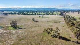 Rural / Farming commercial property for sale at Mokanger Road Cavendish VIC 3314