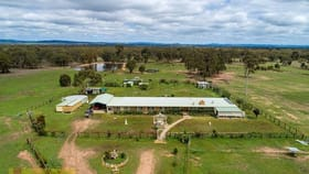 Rural / Farming commercial property for sale at 835 Yarrawonga Road Mudgee NSW 2850