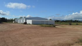 Rural / Farming commercial property for sale at 341 Mulligan Highway Mareeba QLD 4880