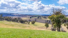Rural / Farming commercial property for sale at 'Boomori' Triangle Flat Road Triangle Flat NSW 2795