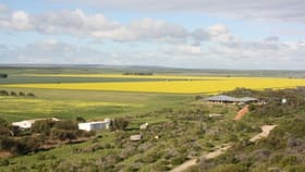 Rural / Farming commercial property for sale at 33767 Brand Highway South Greenough WA 6528