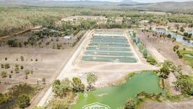 Rural / Farming commercial property for sale at Biboohra QLD 4880