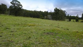 Rural / Farming commercial property for sale at Lot 2 Prices Creek Road Bunyah NSW 2429