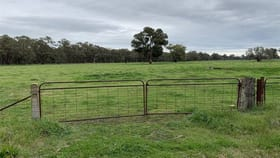 Rural / Farming commercial property for sale at Lots 118 & 122 Schnaar's Road Culcairn NSW 2660