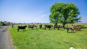 Rural / Farming commercial property for sale at Lot 1 Kinchela Creek Left Bank Road Kinchela NSW 2440