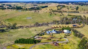 Rural / Farming commercial property for sale at 8022 Illawarra  Highway Sutton Forest NSW 2577