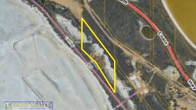 Rural / Farming commercial property for sale at Lot 251 Collier Road Pink Lake WA 6450