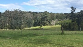 Rural / Farming commercial property for sale at 110 Myers Lane Dondingalong NSW 2440