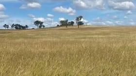 Rural / Farming commercial property for sale at Lot 77 Hendon Goomburra Road (New England Highway) Mount Marshall QLD 4362