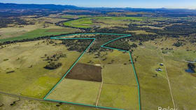 Rural / Farming commercial property sold at 290 Dights Crossing Road Singleton NSW 2330