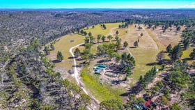 Rural / Farming commercial property for sale at 7269 Nerriga Road Braidwood NSW 2622