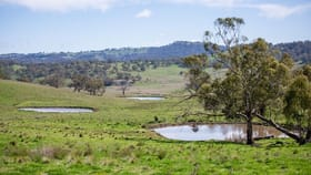 Rural / Farming commercial property for sale at 453 Moredun Road Ben Lomond NSW 2365