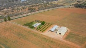 Rural / Farming commercial property for sale at 1229 River Road Mourquong NSW 2739