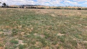 Rural / Farming commercial property for sale at 'Lindale' Jindera Road Walla Walla NSW 2659