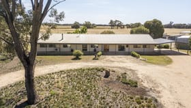 Rural / Farming commercial property sold at 175 MULLER ROAD Echuca VIC 3564