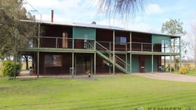 Rural / Farming commercial property for sale at 1039 Old Station Road Gladstone NSW 2440