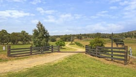 Rural / Farming commercial property for sale at 145-151 Depot Road Merriwa NSW 2329