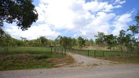 Rural / Farming commercial property for sale at 299 Hodzic Road Biboohra QLD 4880